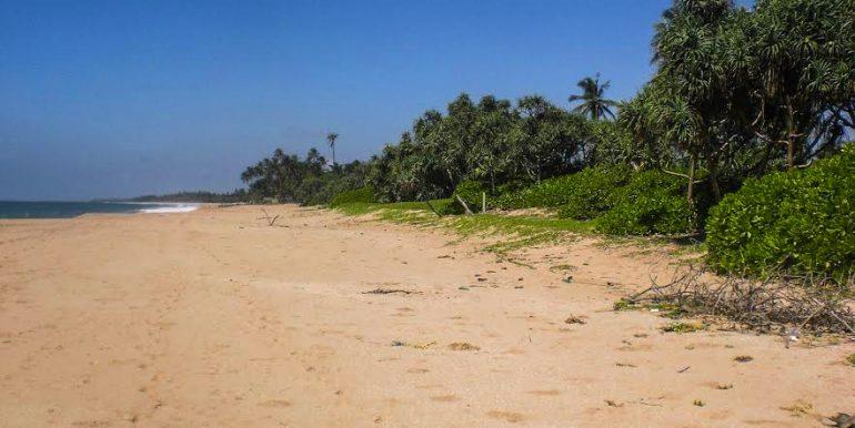 Perfect Beach Plot with Lagoon Views-2-2