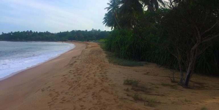 Affordable--Land-on-Swimmable-Beach-1