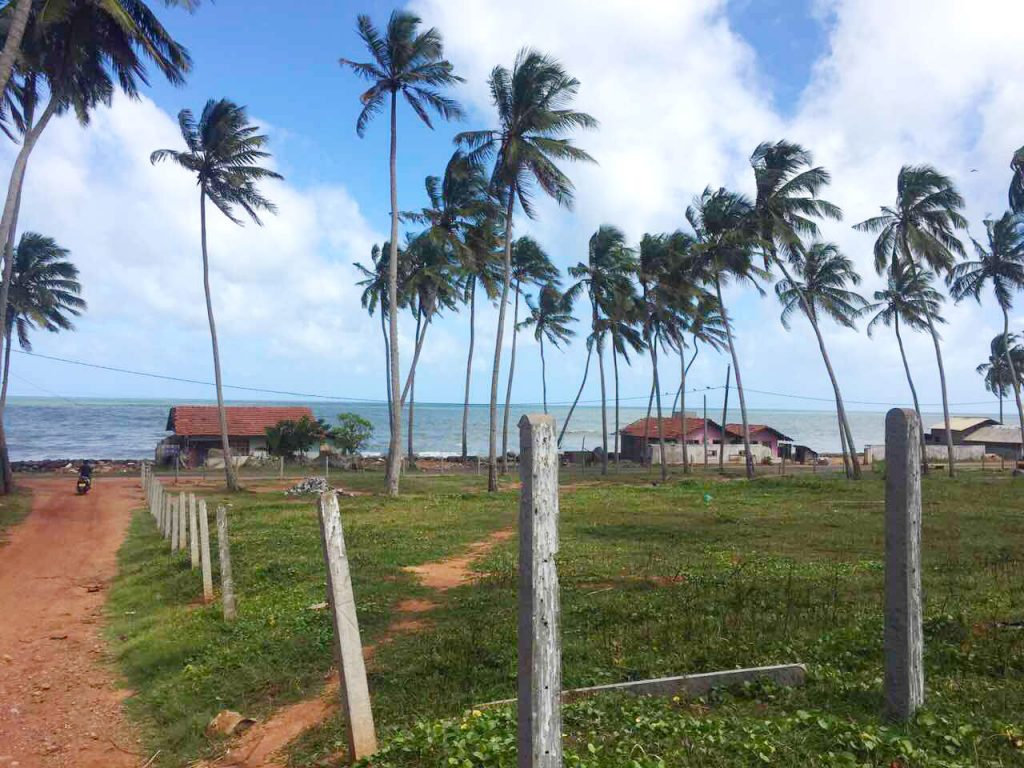 Cheapest Offer of Perfect beach Land