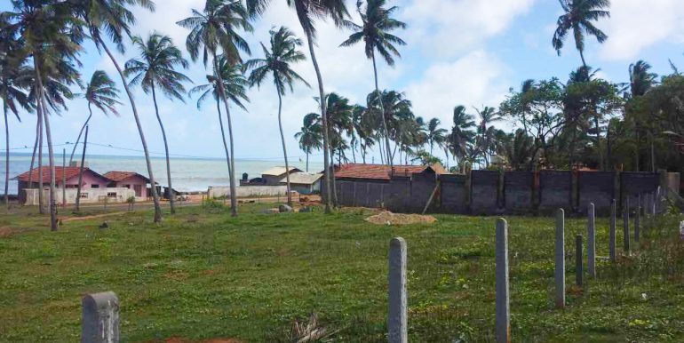 Cheapest-Offer-of-Perfect-beach-Land-3