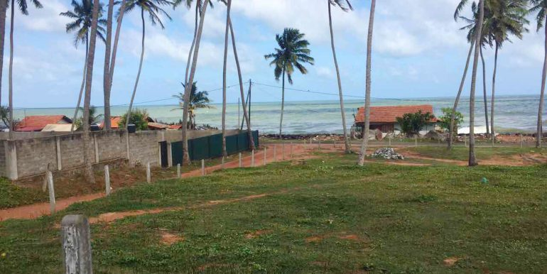 Cheapest-Offer-of-Perfect-beach-Land-4