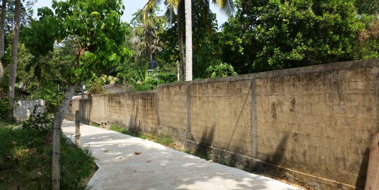 Pretty-Plantation-Land-for-Tourist-Operation-1