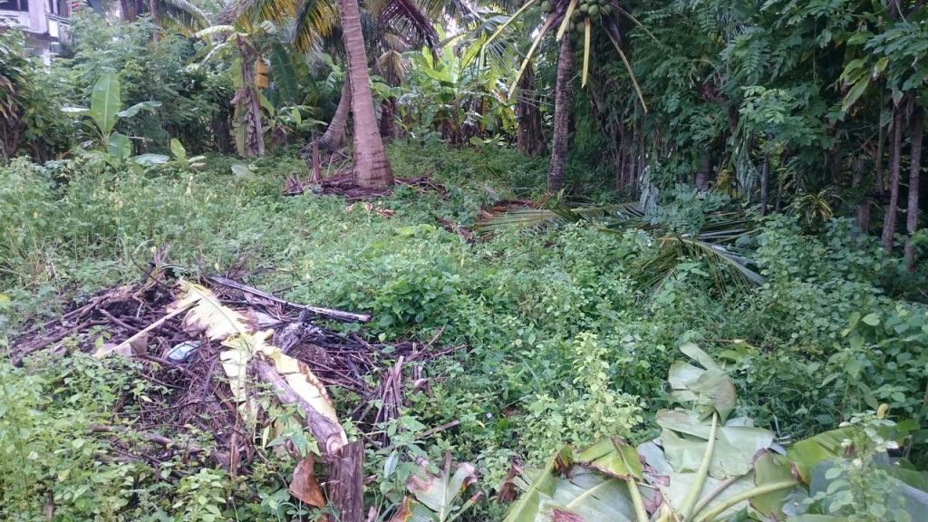 Small plot Very Close to the Beach