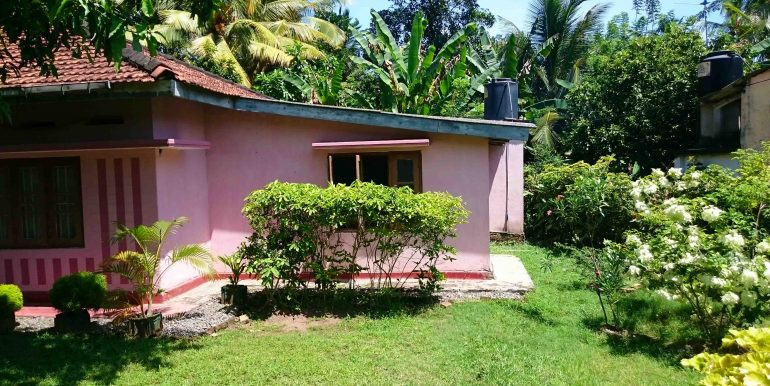 Small Budget House in Good Location-1