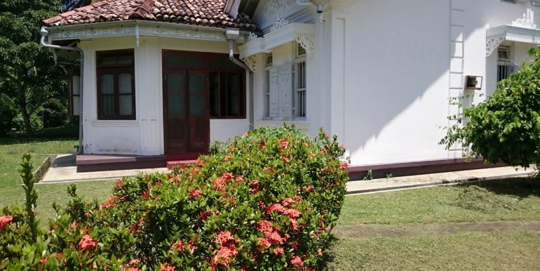 Exceptional-Colonial-Estate-on-Mature-Plantations-4