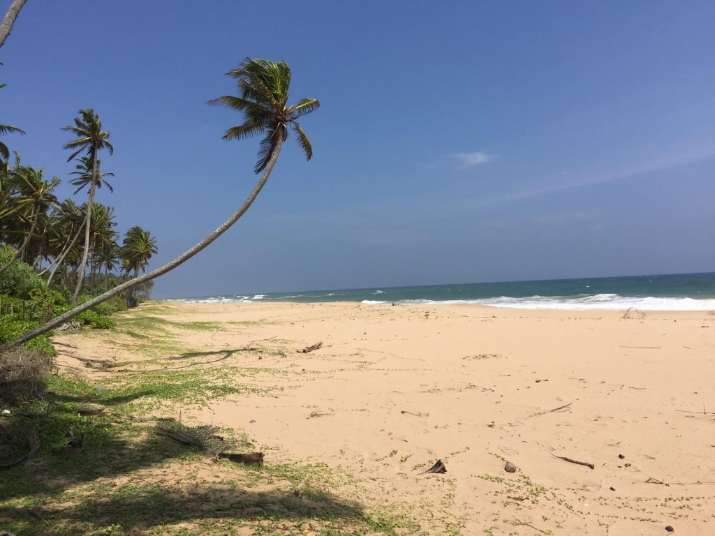 Rare opportunity to Acquire a Small plot on a Perfect Beach
