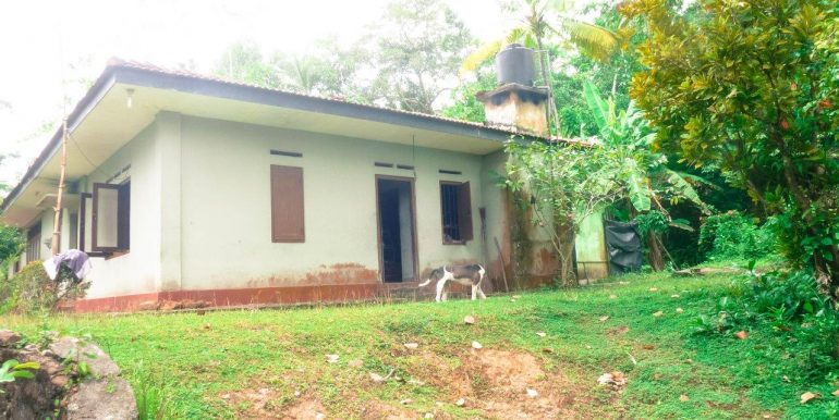 Spacious property surrounded by tranquil envoirenment-1
