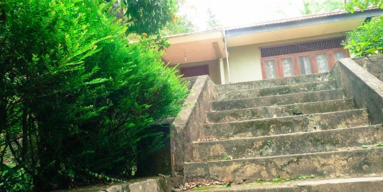 Spacious property surrounded by tranquil envoirenment-6