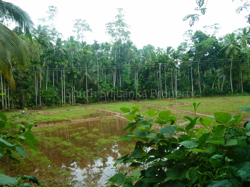 Cheap Large Plot Close to the Beach