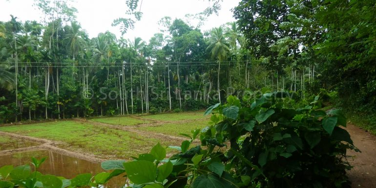 Cheap Large Plot Close to the Beach (7 of 7)