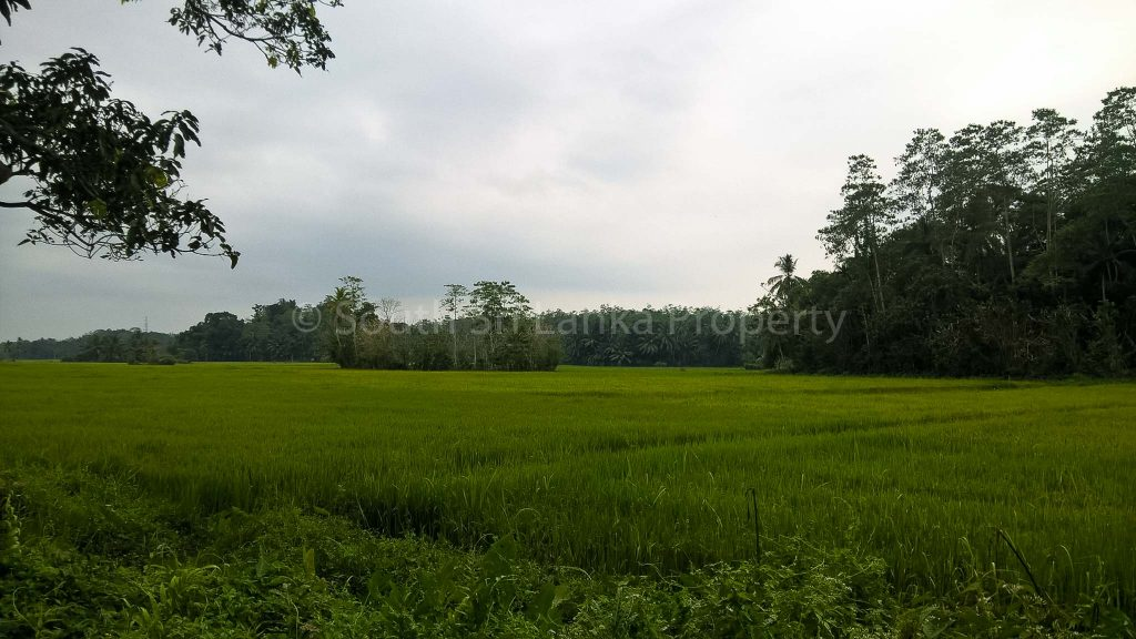 Great Piece of Land with Beautiful Views