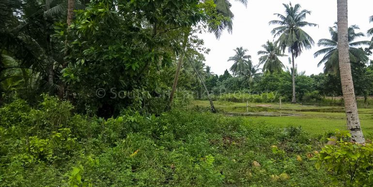 Small Plot Close to the Beach in the Smart Area (1 of 3)