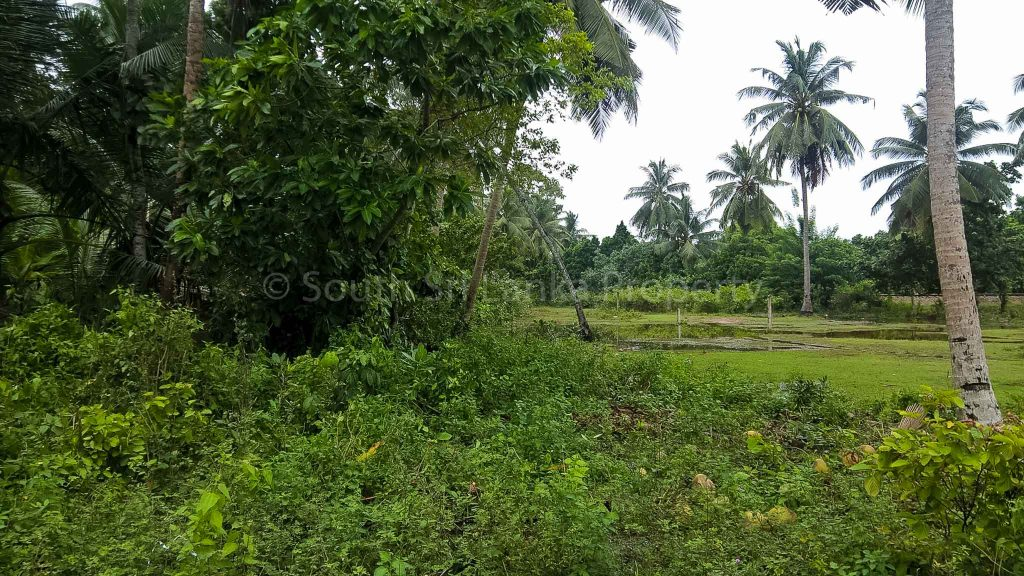 Small Plot Close to the Beach in the Smart Area