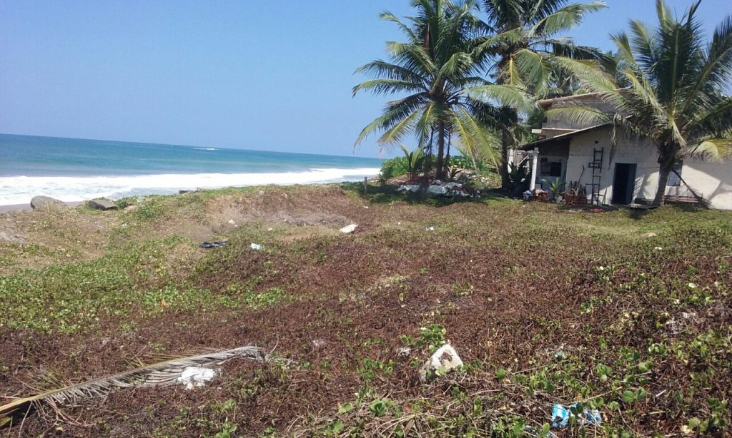 Excellent Small Beach Plot for Entry Level  Investment