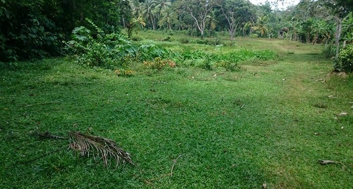 Generous Plot in Excellent Location – Great Value for Money -1