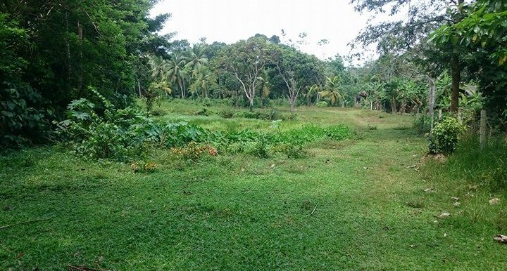 Generous Plot in Excellent Location – Great Value for Money-4