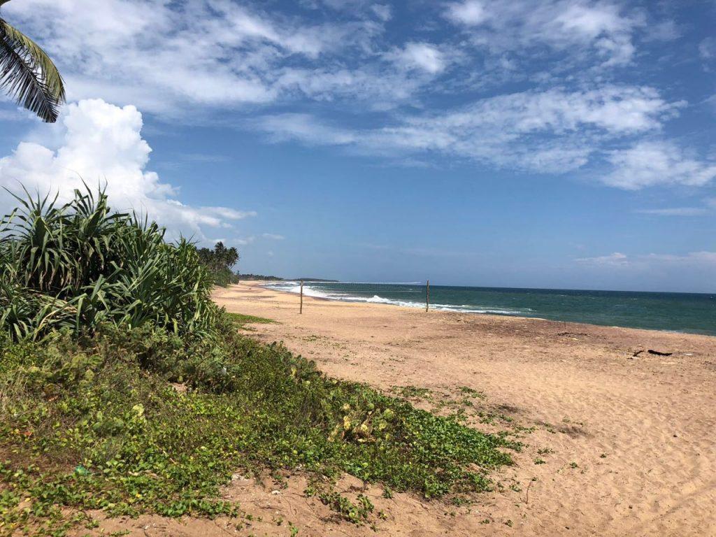 Unspoiled Beach Land Plot – Usangoda