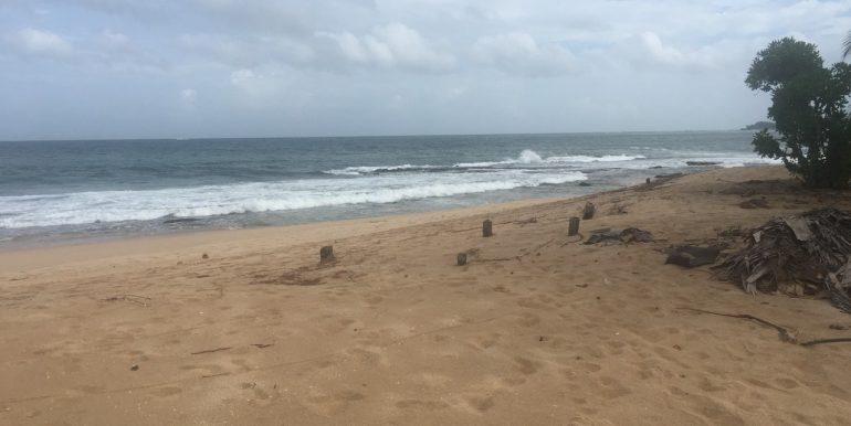 Beach Plots with Beach and Lagoon Frontage-2