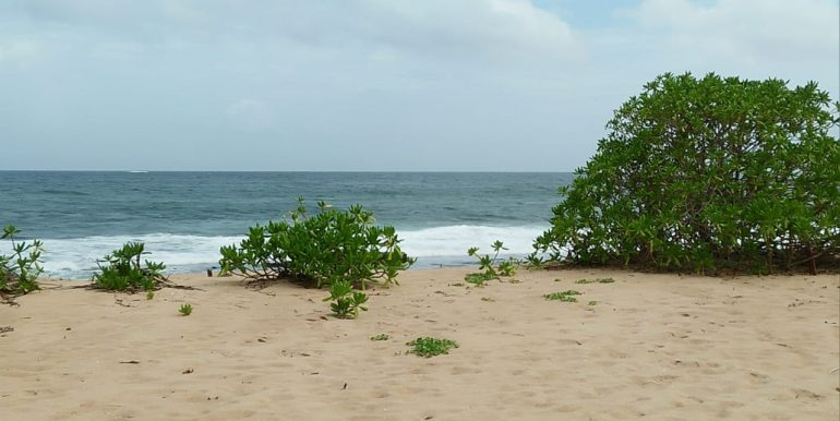 Beach Plots with Beach and Lagoon Frontage-4
