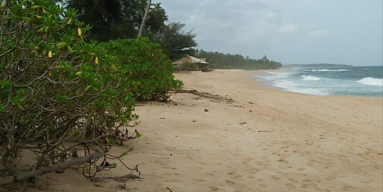 Beach Plots with Beach and Lagoon Frontage-5