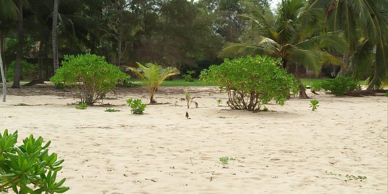 Beach Plots with Beach and Lagoon Frontage-6