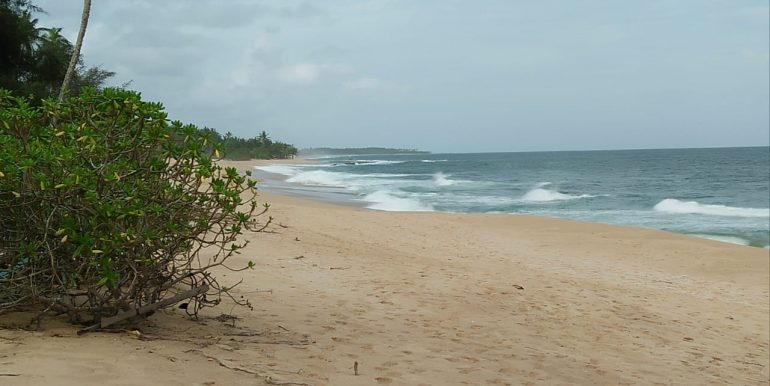 Beach Plots with Beach and Lagoon Frontage-7
