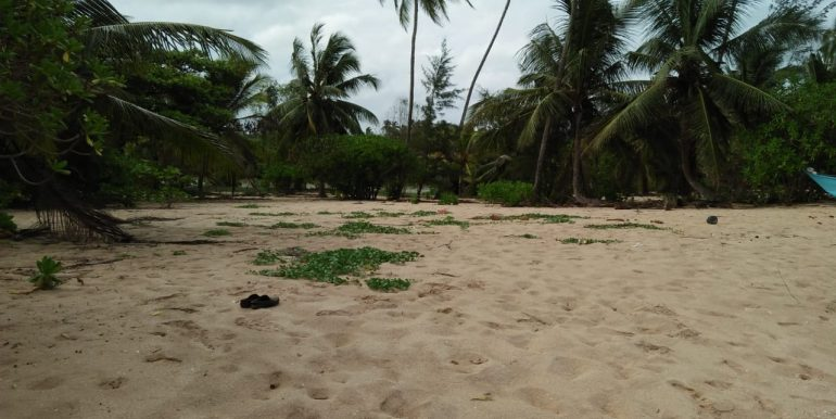 Beach Plots with Beach and Lagoon Frontage-8