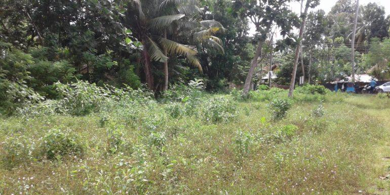 Excellent Plot in Popular Mirissa Close to Beach-2