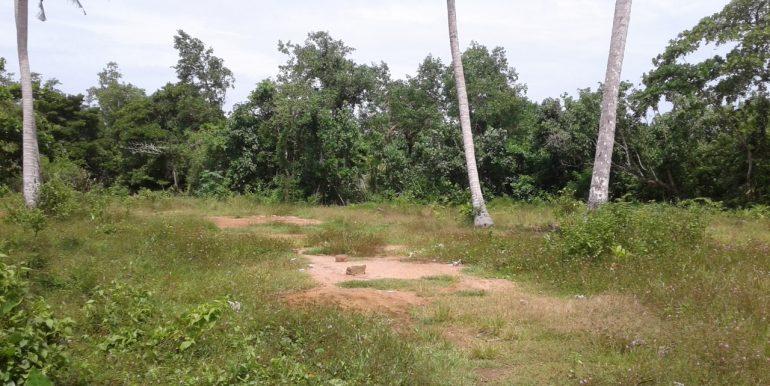 Excellent Plot in Popular Mirissa Close to Beach-4