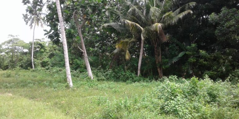 Excellent Plot in Popular Mirissa Close to Beach-6