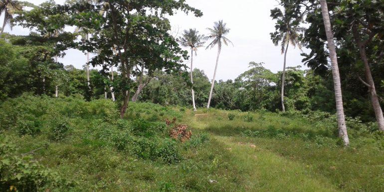 Excellent Plot in Popular Mirissa Close to Beach-7