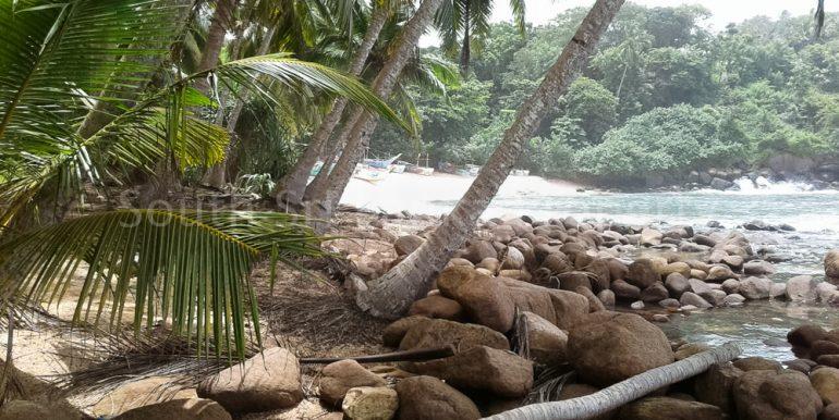Premium Beach Land (4 of 11)