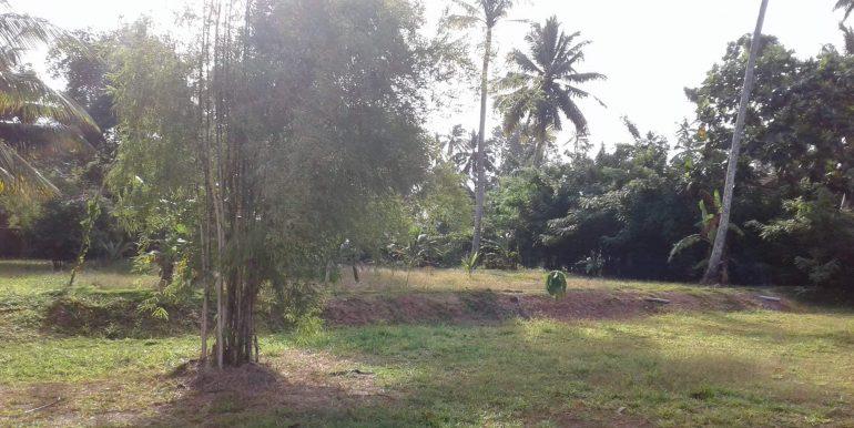 Lake Front Property on Generous Plot-3