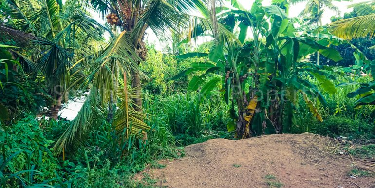 Perfect Beach Plot in Popular Welligama (3 of 5)