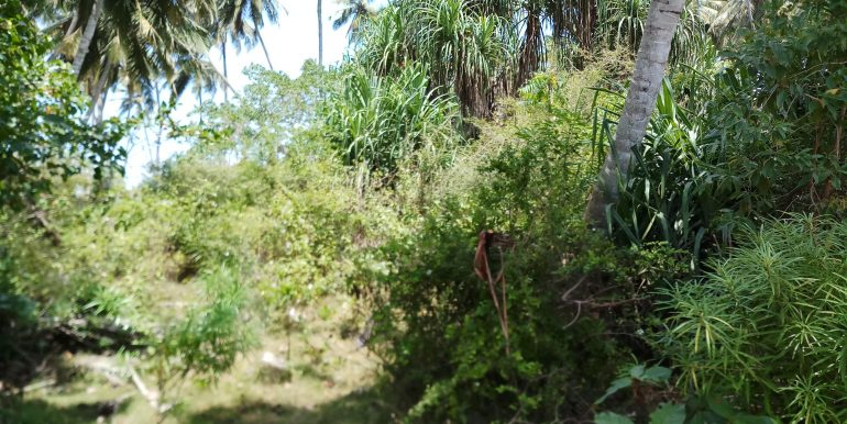 South Sri Lanka Property - Beach land in Rakawa-Tangalle-2