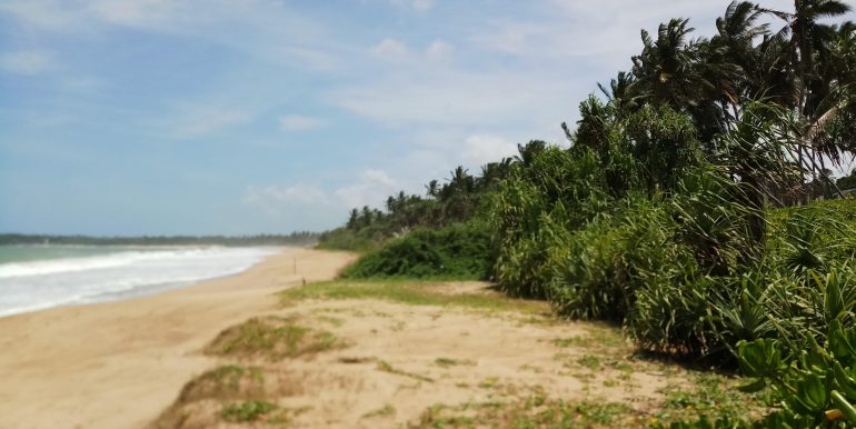 South Sri Lanka Property - Beach land in Rakawa-Tangalle