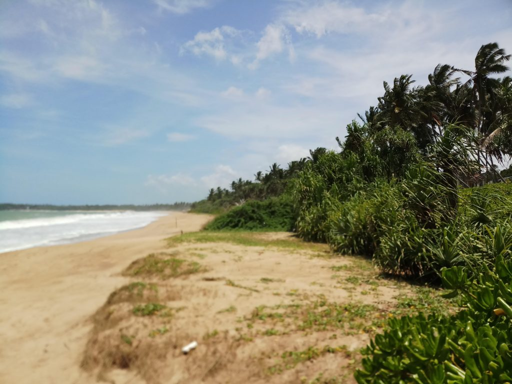 Great cheap beach plot
