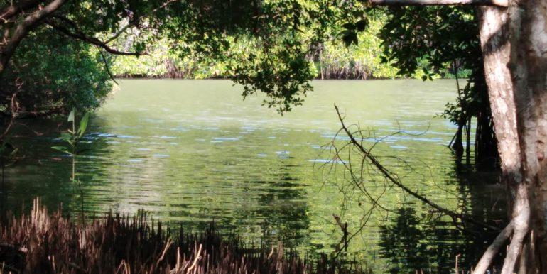 d's lagoon house - lagoon