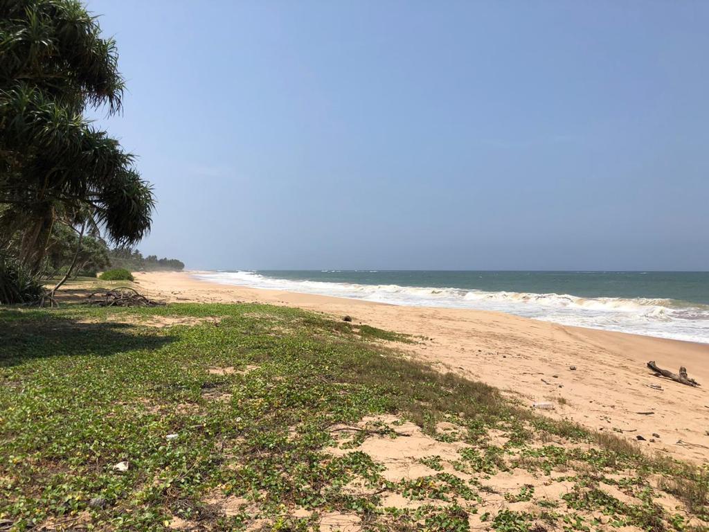 Perfect Beach Plot in Rekawa